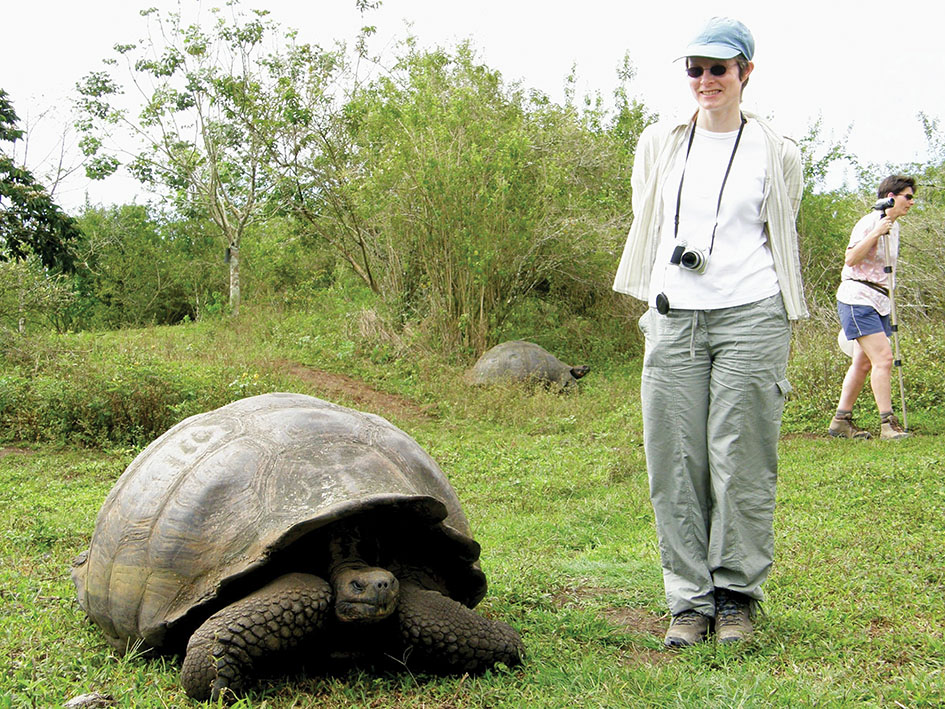 2725674 – giant tortoise with lady