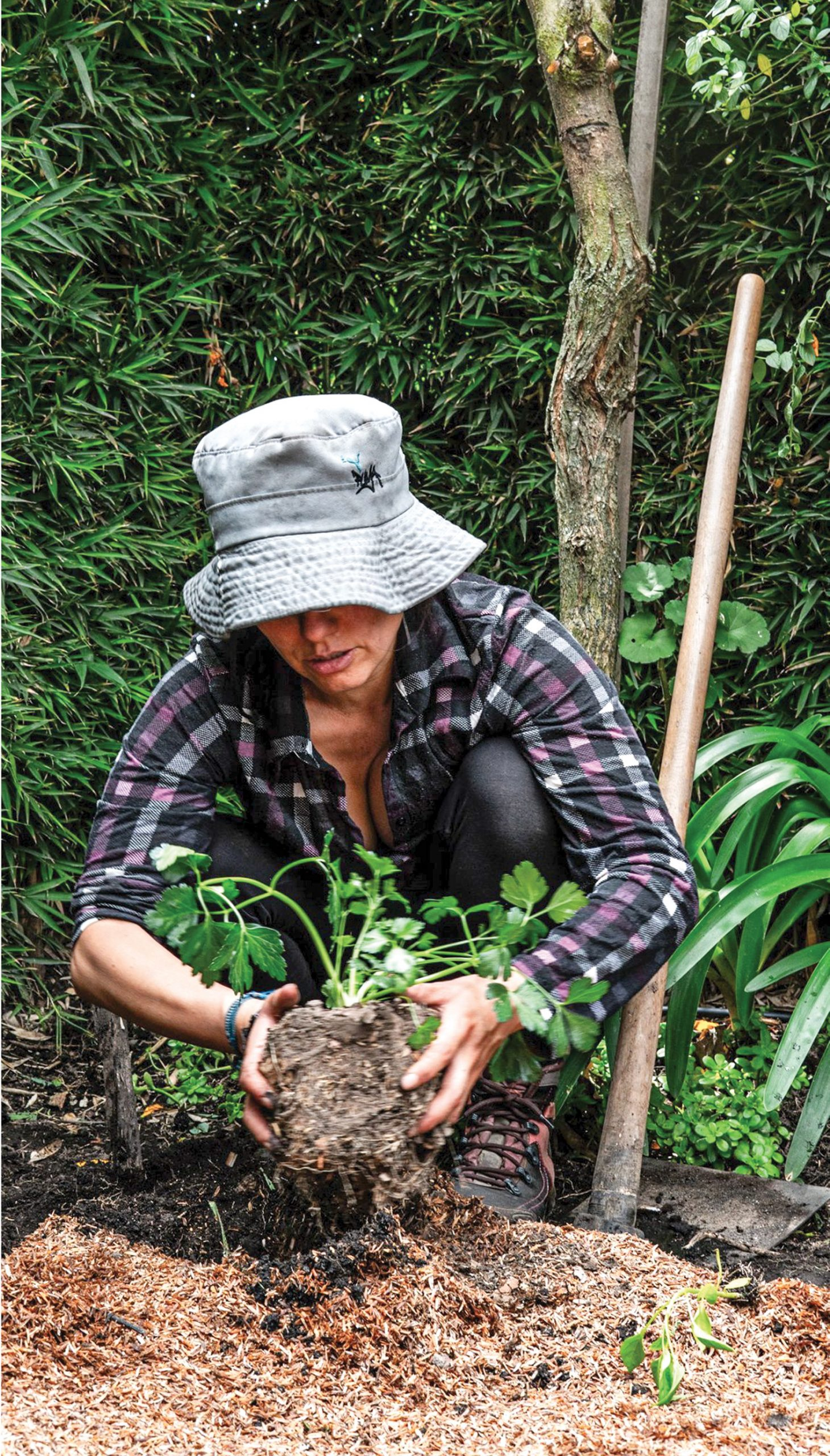 Huertos agroecológicos para comer sano