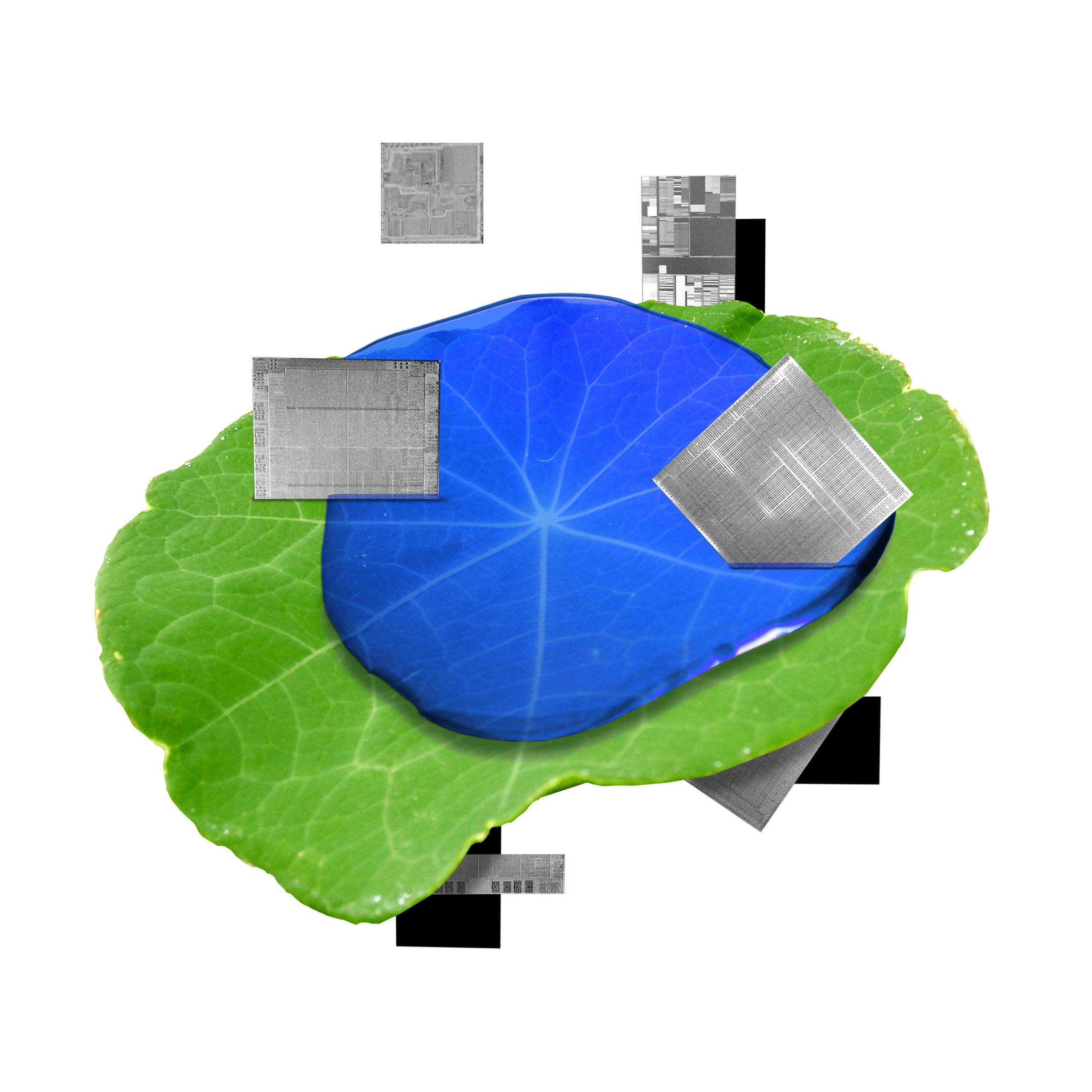 Acelerar radicalmente el proceso de descubrimiento tecnológico permitirá nuestro futuro sostenible