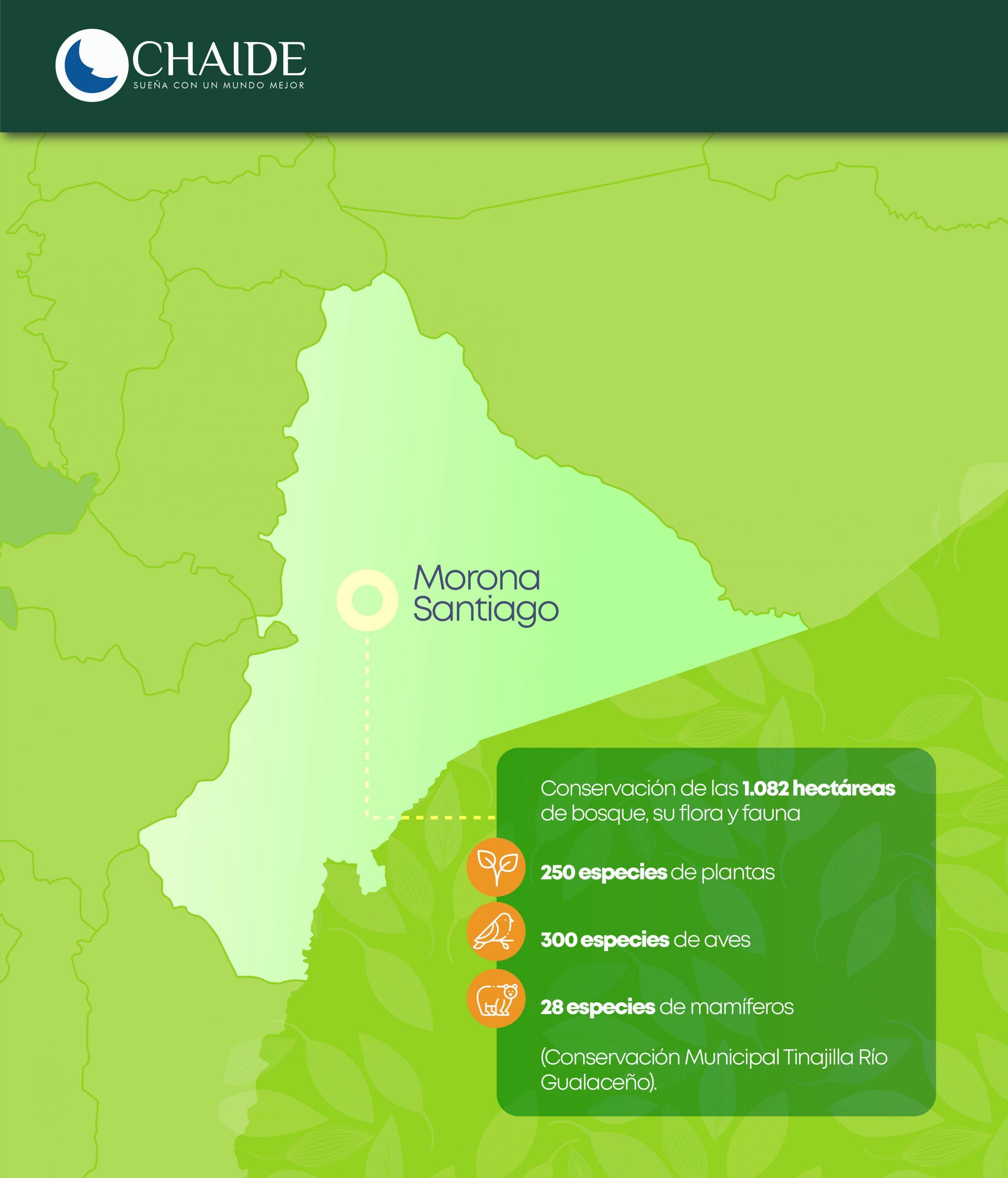 Una alianza público-privada impulsa la conservación de 1.082 hectáreas de bosque en la Amazonía