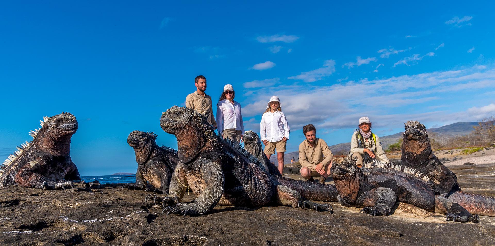marine-iguanas-posing-tourists-galapagos-ecuador