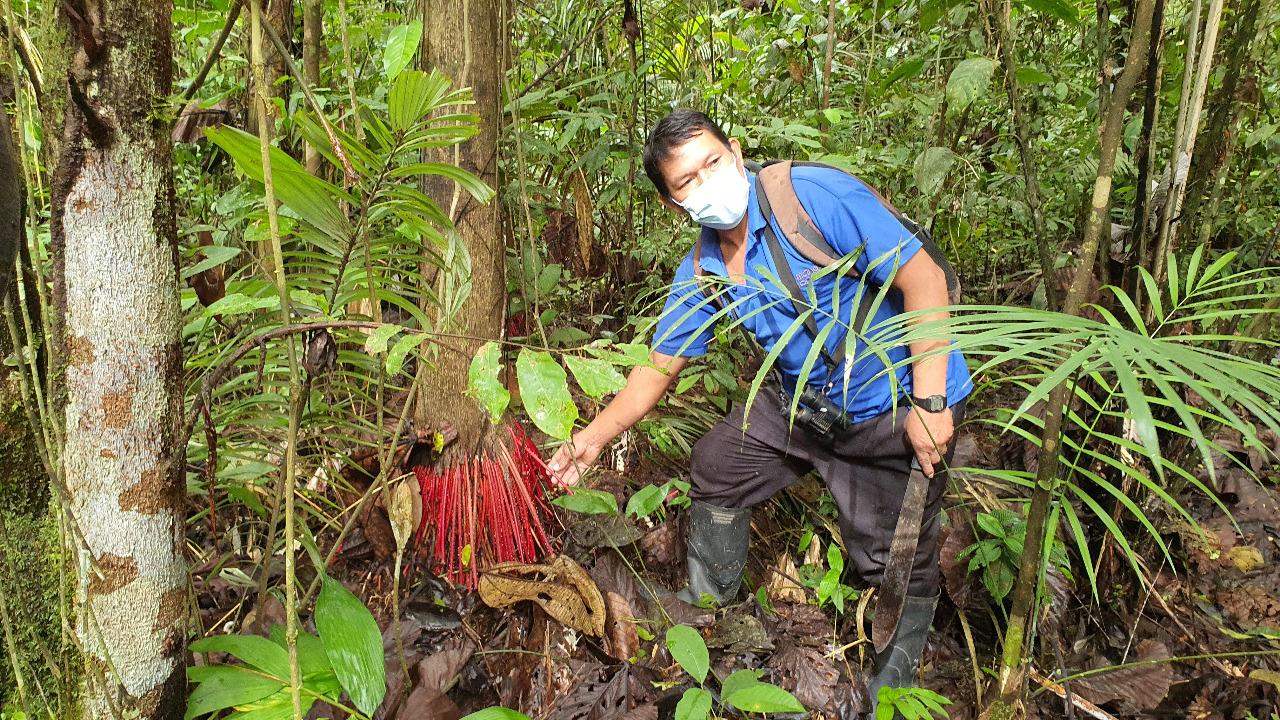 El Reto Amazonía Innova premiará los mejores bioemprendimientos amazónicos 4