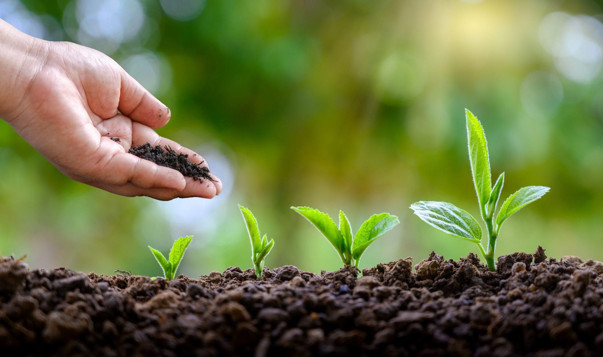 Empresas aceleran iniciativas de sostenibilidad